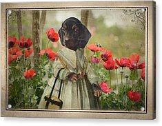 A Walk In The Garden Acrylic Print by Terry Fleckney