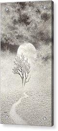 A Walk In The Moonlight Acrylic Print by Mark  Reep