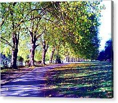 A Walk In The Park Acrylic Print