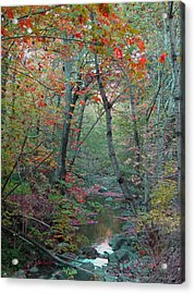 A Walk In The Park Acrylic Print by Brooks Garten Hauschild