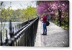 A Walk In The Park Acrylic Print by Chris Halford