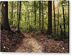 A Walk In The Park Acrylic Print by Robert Culver