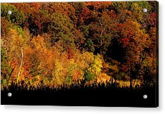 A Walk In The Park - Sunset In Autumn Acrylic Print