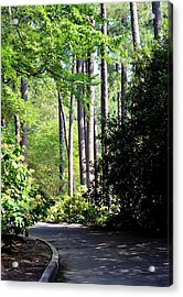 A Walk In The Shade Acrylic Print by Maria Urso