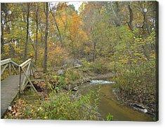 A Walk Next To The Creek Acrylic Print