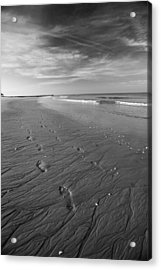 Acrylic Print featuring the photograph A Walk On The Beach by Brad Brizek