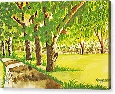 A Walk To Remember Acrylic Print by Shakhenabat Kasana
