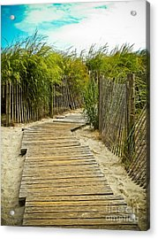A Walk To The Beach Acrylic Print by Colleen Kammerer