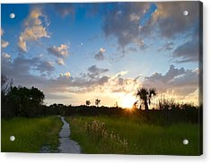 Acrylic Print featuring the photograph A Walk With You... by Melanie Moraga