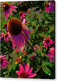 Acrylic Print featuring the photograph A Warm Spring by Diane Miller