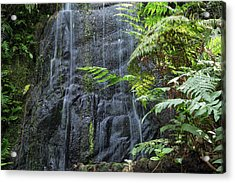 A Waterfall In The Mountain Jungles Acrylic Print