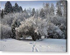 A Winter Day 2 Acrylic Print by Vladimir Kholostykh