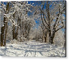 Acrylic Print featuring the photograph A Winter Road by Raymond Salani III