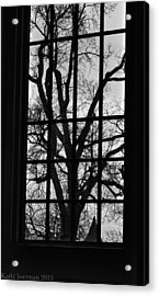A Winter View Acrylic Print by Kathi Isserman