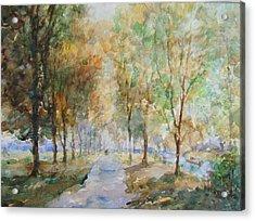 A Winter Walk Acrylic Print by Malcolm Mason