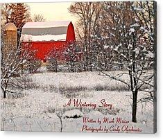 A Wintering Story Acrylic Print by Mark Minier