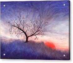 A Wintering Tree Acrylic Print by Mark Minier