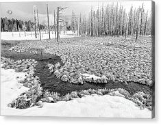 A Winter's Afternoon In Yellowstone Acrylic Print by Sandra Bronstein