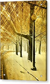 A Winter's Night Acrylic Print by Marty Koch