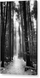 A Winters Path Black And White Acrylic Print by Bill Wakeley