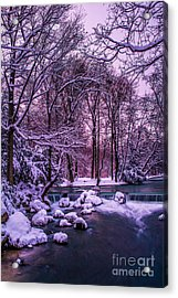 a winter's tale I - hdr Acrylic Print by Hannes Cmarits