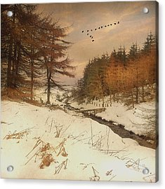 A Winters Tale Acrylic Print by Roy  McPeak
