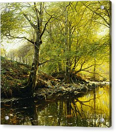 A Wooded River Landscape Acrylic Print by Peder Monsted
