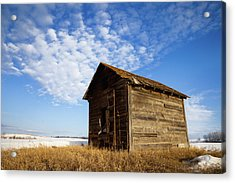 A Wooden Shed Stands Alone Acrylic Print by Steve Nagy