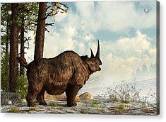 A Woolly Rhinoceros Trudges Acrylic Print