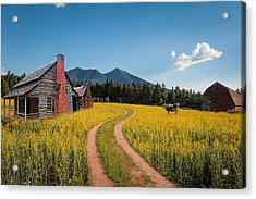Abandoned Country Life Acrylic Print by Fred Larson