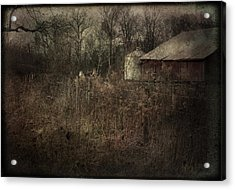 Acrylic Print featuring the photograph Abandoned Farm by Cynthia Lassiter