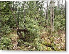 Abandoned Harp Switch Stand - New England Usa Acrylic Print