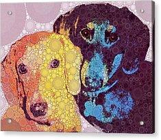 Abby And Simon Acrylic Print by Cindy Edwards