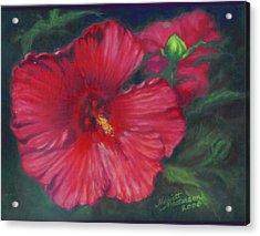 Abby Rose's Mallow Acrylic Print