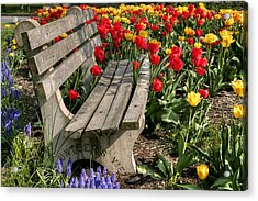 Abducted Park Bench Acrylic Print