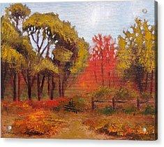 Abeel Fields Acrylic Print by Jason Williamson
