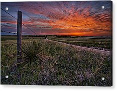 Ablaze Acrylic Print by Thomas Zimmerman