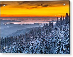 Above Ocean Of Clouds Acrylic Print by Evgeni Dinev