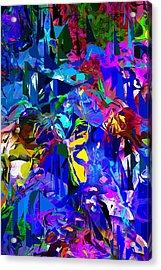 Abstract 010215 Acrylic Print by David Lane