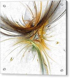 Abstract 100 Marucii Acrylic Print