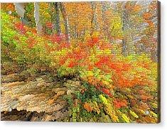 Abstract Autumn  Acrylic Print