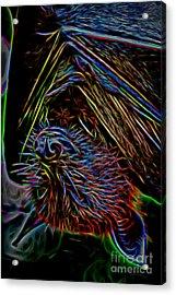 Abstract Bat Acrylic Print