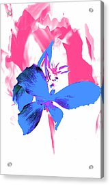 Abstract Blue Acrylic Print by Cathie Tyler