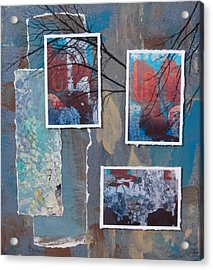 Abstract Branch Collage Trio Acrylic Print by Anita Burgermeister