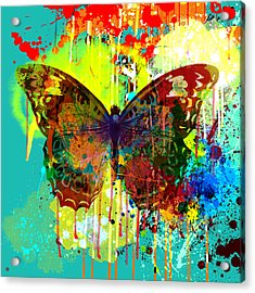 Abstract Butterfly Acrylic Print by Gary Grayson