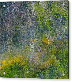 Abstract By Nature Acrylic Print by Roxy Hurtubise