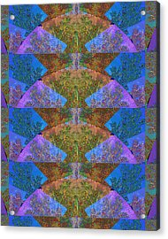 Abstract Compilation Of Moon Arc  Materials Used From Nature Photography Of Fall Season Around Oakvi Acrylic Print by Navin Joshi