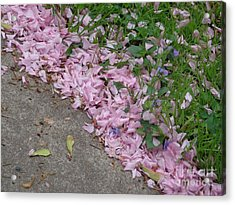 Acrylic Print featuring the photograph Abstract Diagonal Pink Petals by Christina Verdgeline