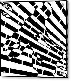 Abstract Distortion Childhood Joy Maze Acrylic Print by Yonatan Frimer Maze Artist