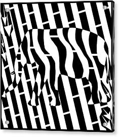 Abstract Distortion Invisible Elephant In The Room Maze  Acrylic Print by Yonatan Frimer Maze Artist